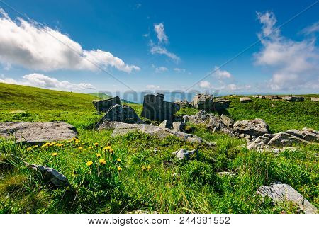 Boulder And Dandelions In Summer Landscape. Peak Of Runa Mountain In The Distance. Beautiful Scenery