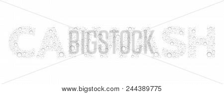 Text From Droplets Texture. Word Carwash. Vector Realistic Water Drops Condensed On White Background