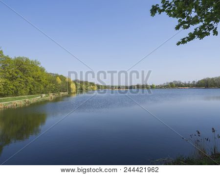 Pond In Dolni Pocernice, Biggest Prague Pond, Green Tree And Clear Blue Sky