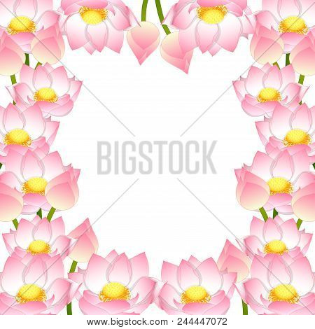 Nelumbo Nucifera Vector Photo Free Trial Bigstock