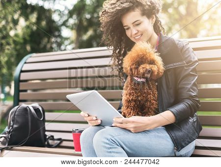 Happy Girl With Tablet And Dog Outdoors. Curly Woman Surfing The Web With Her Puppy On Bench In City