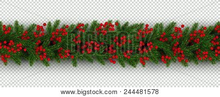 Christmas And New Year Border Of Realistic Branches Of Christmas Tree And Holly Berries Element For