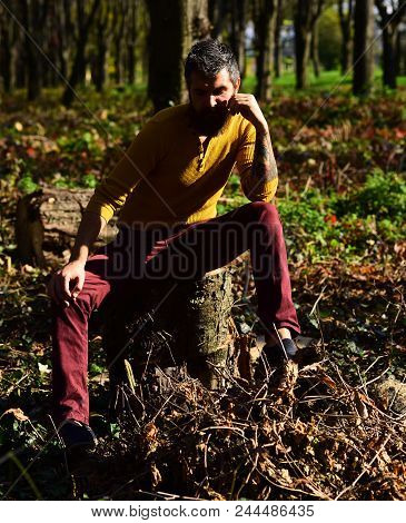 Macho Spends Time In Park. Man With Serious Face On Nature Background. Loneliness And Autumn Nostalg