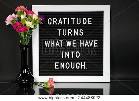 Inspiration Quote About Gratitude On Message Board With Carnation Bouquet In Black Vase