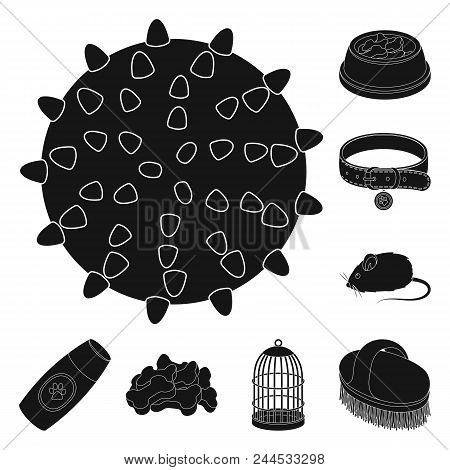 Pet Shop Black Icons In Set Collection For Design.the Goods For Animals Vector Symbol Stock  Illustr