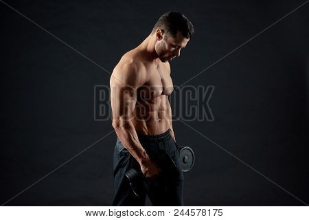 Sexy Sporty Muscular Bodybuilder Body. Sportsman Training In Gym, Exercising With Heavy Dumbbels. Mo