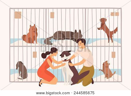 Pair Of Smiling Young Man And Woman Adopting Pet From Animal Shelter, Pound, Rehabilitation Or Adopt