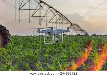 Drone Flying And Mapping Corn Field In Front Of Irrigation System. Farmland Surveying And Modern Tec