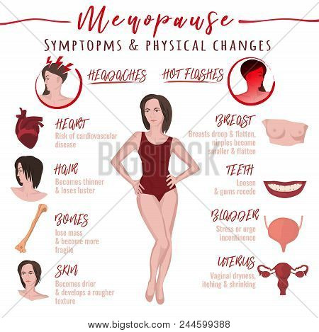 Menopause symptoms and physical changes. Vector illustration with useful facts isolated on a white background. Scientific, educational and popular-scientific concept. WOmen health poster. poster
