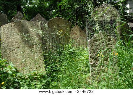 Gravestones In Prague Jewish Cemetary