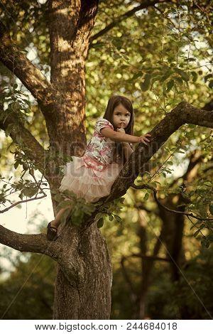Children's Secret. Child Climb Tree Branch In Summer Garden, Secret Or Silence