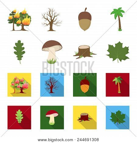 Oak Leaf, Mushroom, Stump, Maple Leaf.forest Set Collection Icons In Cartoon, Flat Style Vector Symb