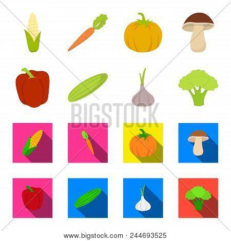 Red Sweet Pepper, Green Cucumber, Garlic, Cabbage. Vegetables Set Collection Icons In Cartoon, Flat
