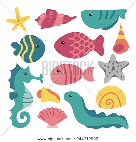 Sea Animals Collection, Marine Life Collection, Sea Animal Set, Sealife Background, Aqurium Collecti