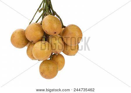 Burmese Grape - Mafai In Thai, Sweet And Sour Fruit (scientific Name Is Baccaurea Ramiflora Lour) Is