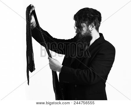 Fashionable Tie. Bearded Man, Long Beard. Brutal Caucasian Hipster With Moustache In Black Suit Hold