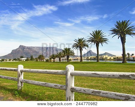 Landscape.with  A Rustic White Washed Fence In The Fore Ground, And A Row Of Palm Trees And Houses B
