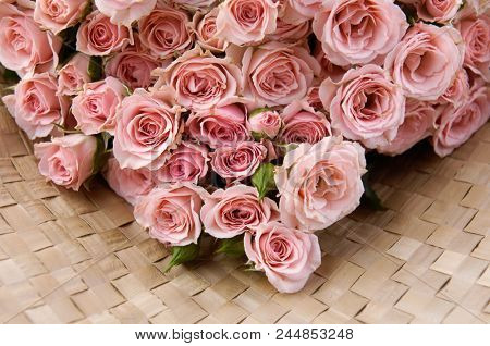 pink branch rose on mat background