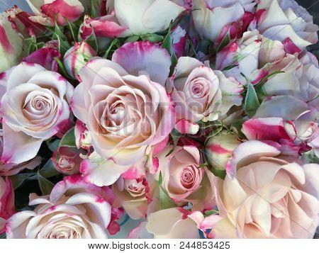 bouquet rose in shop