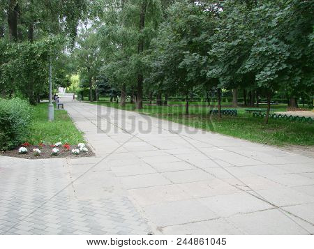 A Path In A Summer Park. Sunny Evening In The Park, Tropic Through The Park, Forest, Natural Landsca