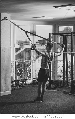 Instructor Of Bodybuilding. Man With Nude Torso, And Muscular Back In Gym Enjoy Training, Trx. Sport