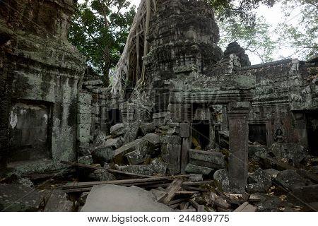 Cambodia Siem Reap Angkor Ta Prohm Temple