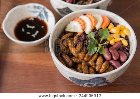 Insect And Rice Berry - Cricket Insect, Corn, Red Bean, Carrot, Cucumber With Rice Berry In A Bowl.