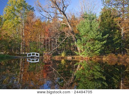 Pond With Footbridge