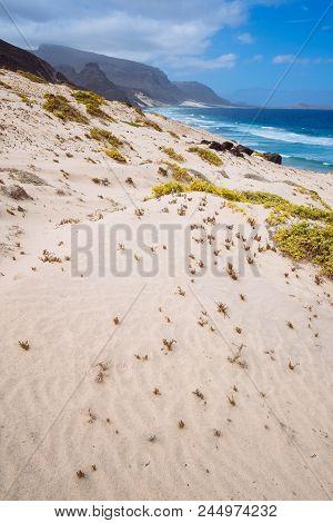 Sandy Dunes With Some Desert Plants In Stunning Desolate Landscape Of Atlantic Coastline. Baia Das G
