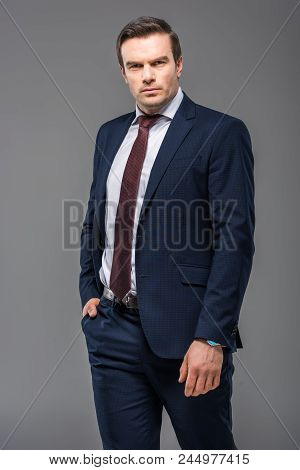 Handsome Serious Businessman Posing In Formal Wear, Isolated On Grey