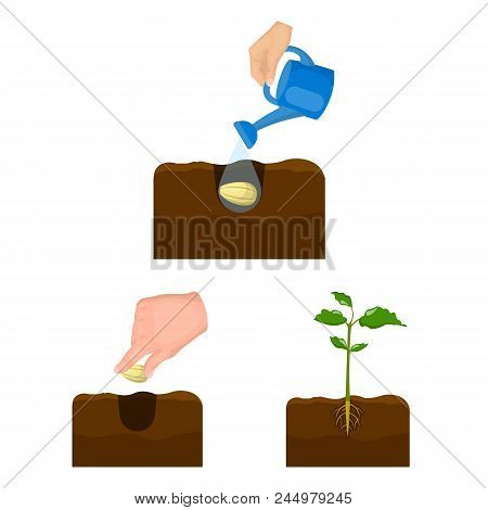 Farm And Agriculture Cartoon Icons In Set Collection For Design. Garden And Plants Isometric Vector