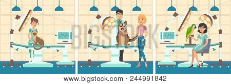 Cartoon Set People With Pets In Examination Room Of Veterinary Clinic. Cat, German Shepherd And Parr