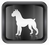 Dog Zodiac icon isolated on white background. poster