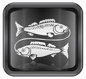 Pisces zodiac icon isolated on white background poster