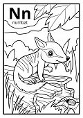 Coloring book for children, colorless alphabet. Letter N, numbat poster