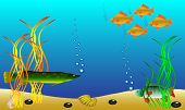 Underwater landscape - fish and seaweed - vector. poster