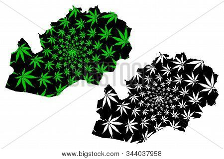 West Kazakhstan Region (republic Of Kazakhstan, Regions Of Kazakhstan) Map Is Designed Cannabis Leaf