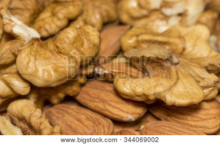 Delicious Almonds, Walnuts Peeled Large For The Manufacture Of