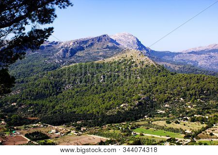 View Of Beautiful Green Forest With Mountains In Background In The City Of Pollenca, Mallorca, Spain