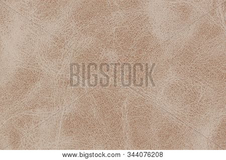 A Tan Brown Fawn Leather Background Tan