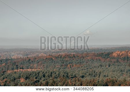 Heathland Pine Trees Forests With Windmill Poer Generator In Luneberg Hide Wiildpark