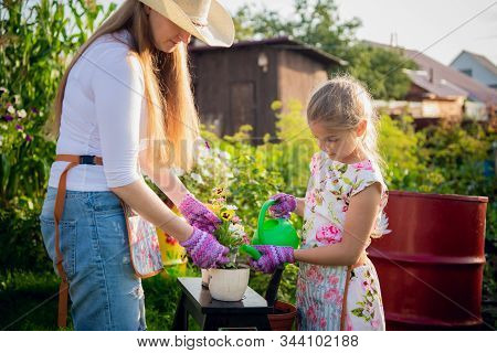 Woman Gardener Helping Her Daughter To Pour Garden Flower Pot.