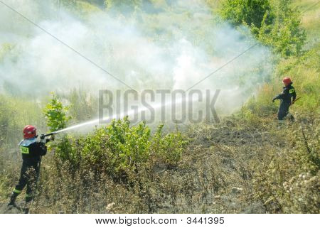 Fireman Fighting A Heath Fire In Gdansk, Poland