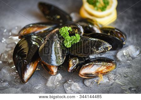 Raw Mussels With Herbs Lemon And Dark Plate Background / Fresh Seafood Shellfish On Ice In The Resta