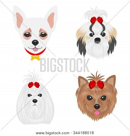 Faces Of Dogs Of Different Parodies. Dogs Drawn In Pop Art Style. Set Of Flat Vector Illustrations O