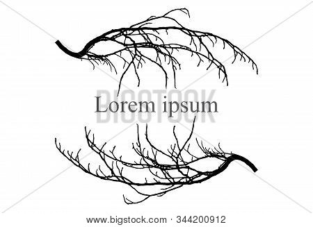 Silhouette Of Branch Tree, Frame For Text, Lorem Ipsum. Vector Illustration.