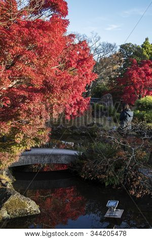 Koko-en Garden With Fall Foliage Colors Near The Small Pond In Himeji Japan. Here Is Very Famous To