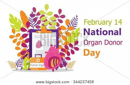 National Organ Donor Day Is Observed On February 14, 2020. Human Organ Donor Transplantation Concept