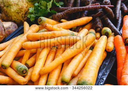 Fresh Raw Organic Uncooked Carrot Vegetables For Sale At Farmers Market. Vegan Food And Healthy Nutr