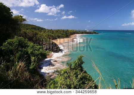 Guadeloupe Sandy Beach Of Basse-terre Island. Caribbean Vacation Landscape. Grand Bas Vent Beach (pl